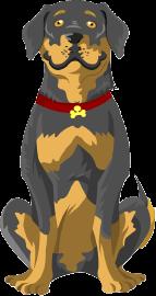 Avatar Bruno