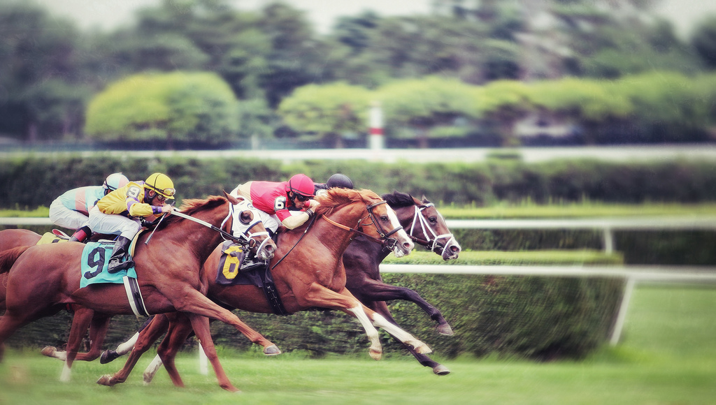 Software Evaluation 5 Steps to Pick a Winner