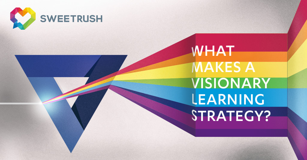 Visionary Learning Strategy