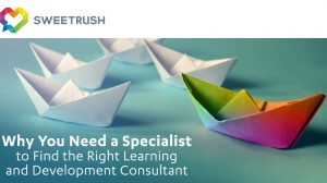 learning and development consultant