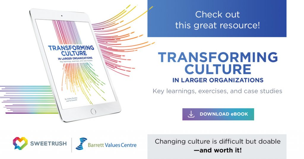 Culture_Transformation_ebook