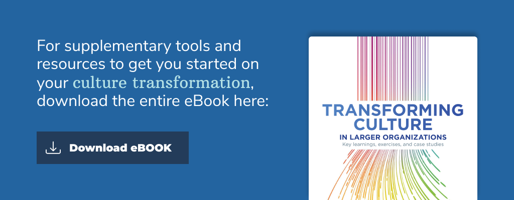 Transforming Culture in Larger Organizations eBook Banner